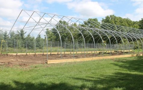Student Organic Farm's hoop house to expand growing period by four months