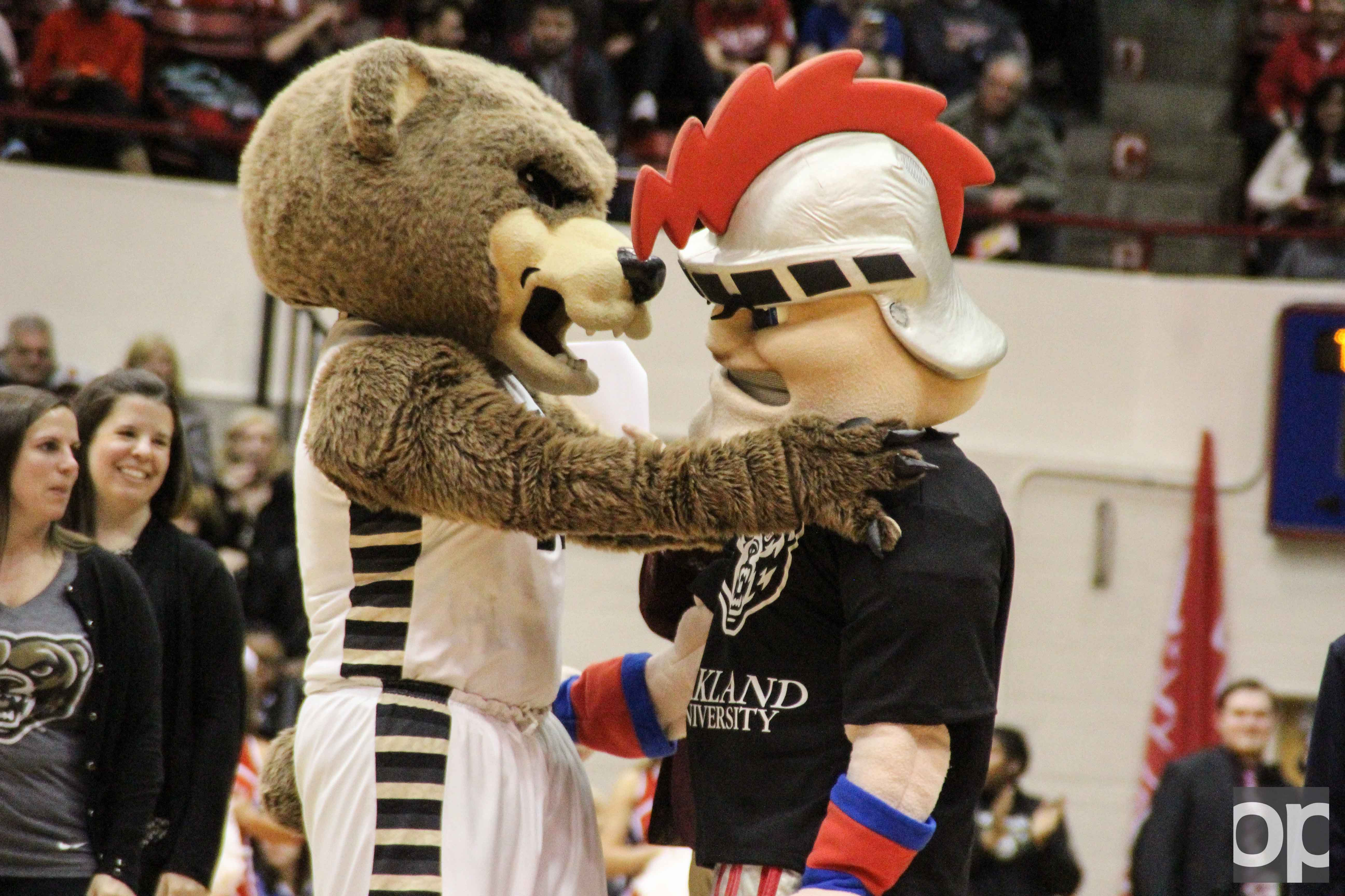 Since Oakland's 626 donors beat out UDM's 470 donors to win the Giving Challenge, Tommy the Titan had to wear the bear at the men's basketball rivalry game on Friday, Feb. 10 in Calihan Hall.