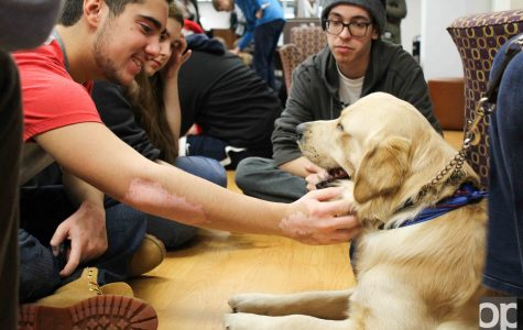 Leader Dogs for the Blind encourages nonprofit work