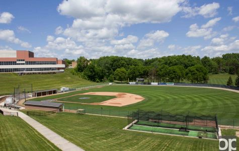 Baseball and softball fields in need of tune-up