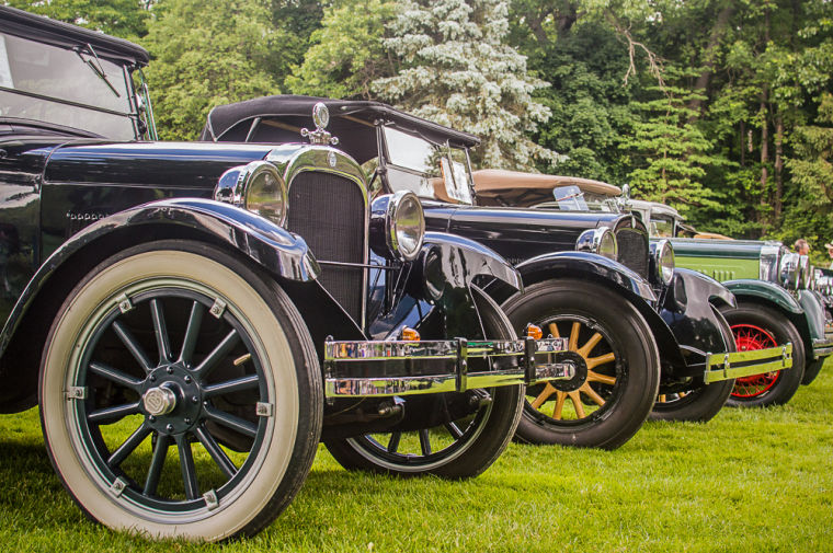 One-hundred vintage Dodge vehicles were on display throughout the grounds of Meadow Brook for the Vintage Dodge Brothers Car Show. Ninety of these cars were here for the International Centennial Meet, with members coming as far as Australia and England to participate.