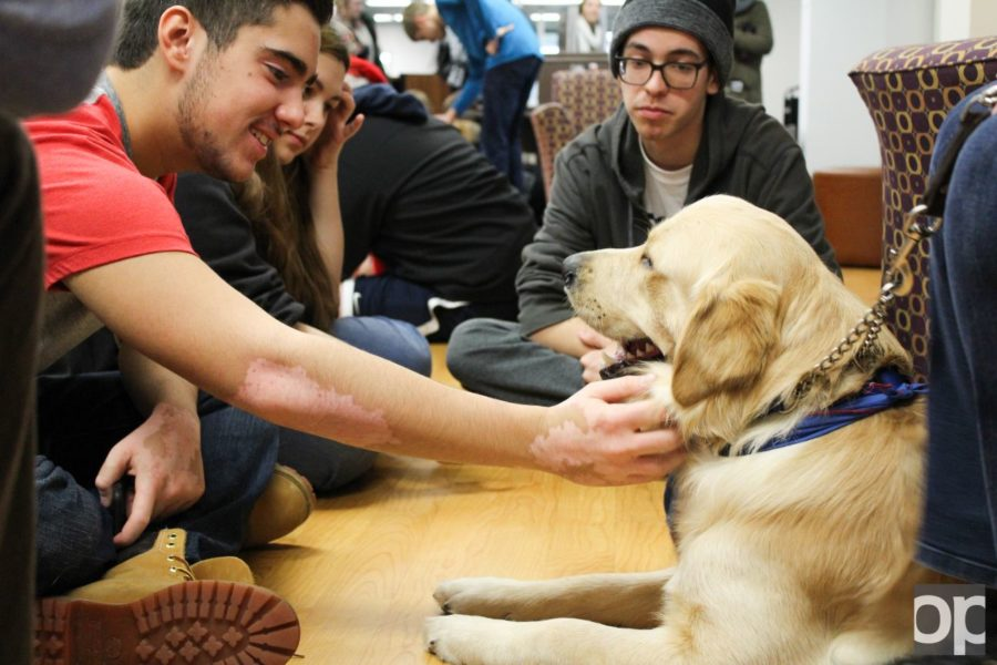 Students interact with a service dog before winter break on campus.