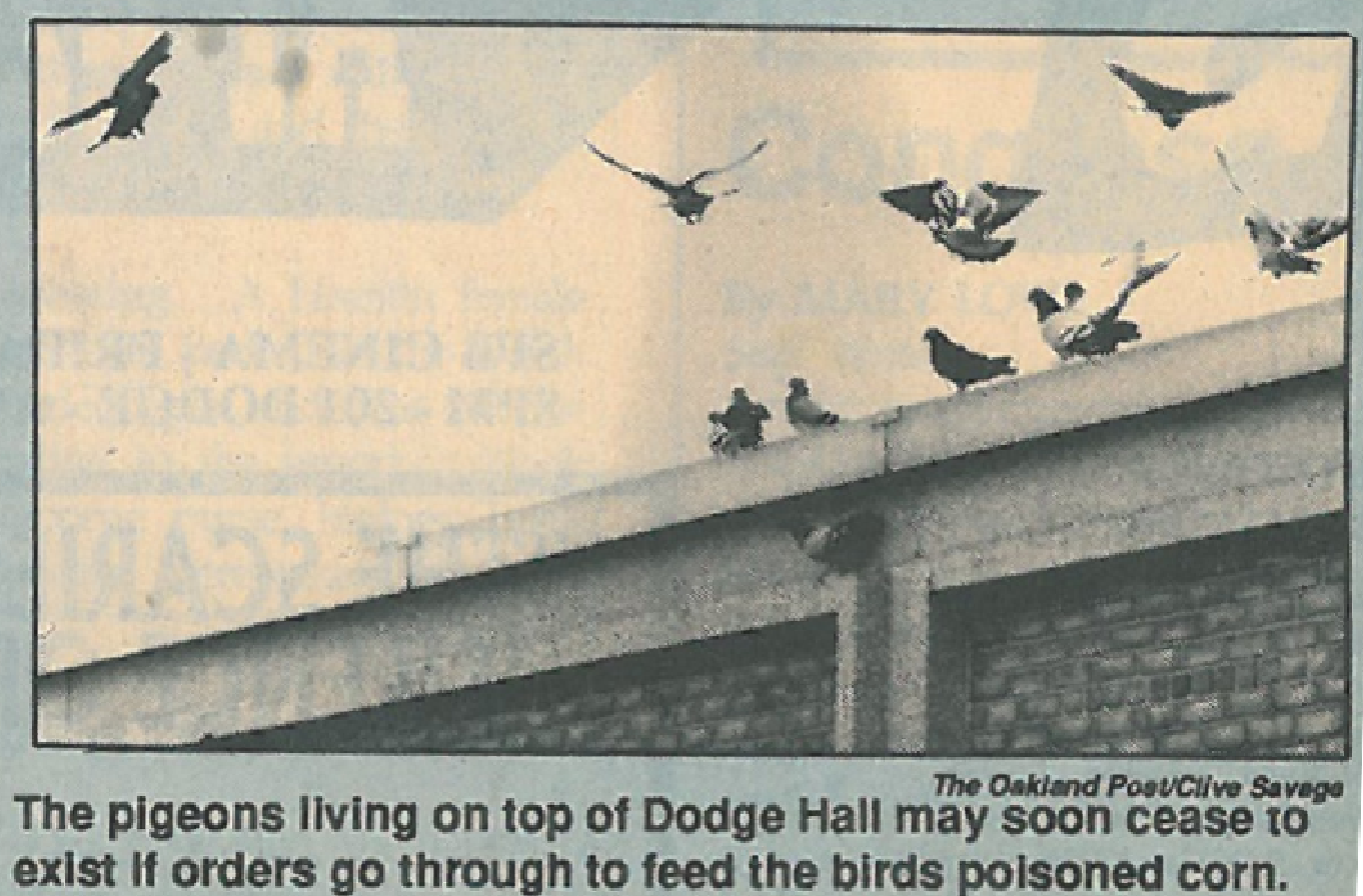 This photo ran in the Feb. 17, 1993, issue of the Oakland Post with the caption: