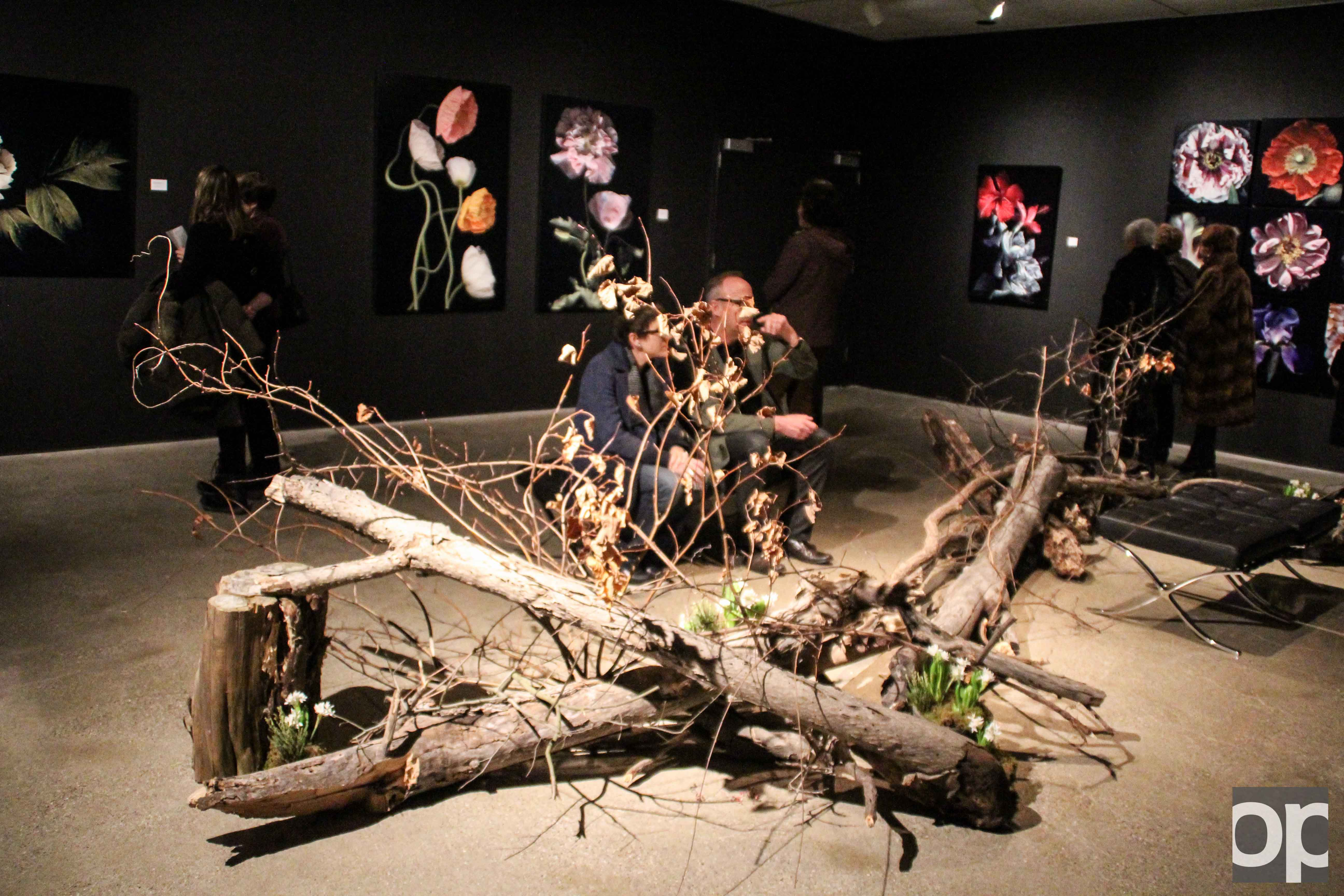 The current exhibit at the Oakland University Art Gallery, Hiberna Flores, will be on display until Feb. 19.