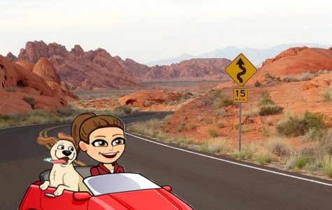 SATIRE: How to AirBnb for your next road trip