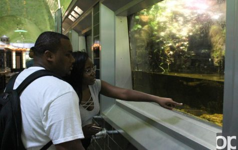 SOPE takes students to Belle Isle State Park