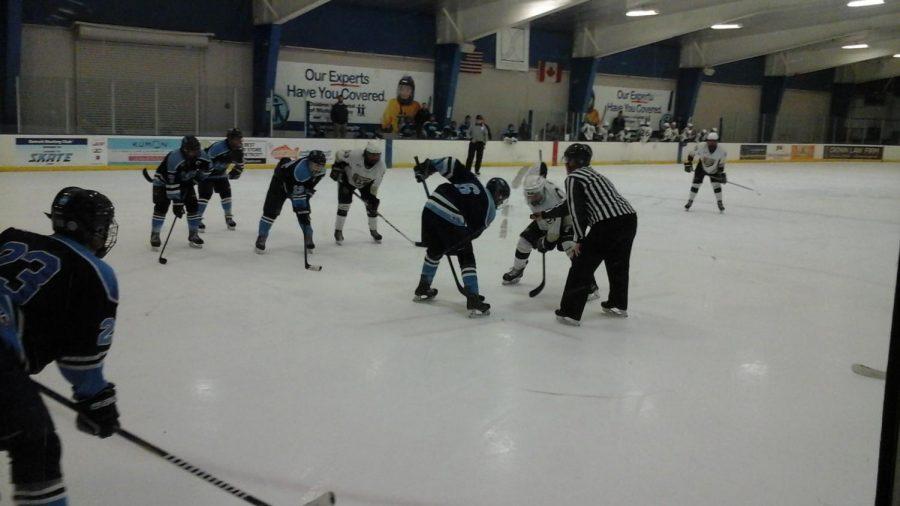 The D-III club hockey team calls the Detroit Skating Club it's home rink.
