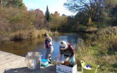 OU researchers contribute to ending mudsnail invasions in Michigan waters