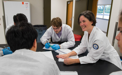 Microbiology professor Tracey Taylor is named assistant dean of OUWB's Office of Diversity and Inclusion.