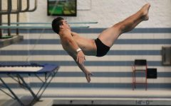 Diver rebounds from broken hand