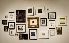 A collection of art that is viewable in the art gallery connected to Wilson Hall.