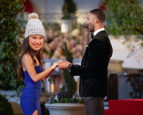 How I would win the Bachelor - it