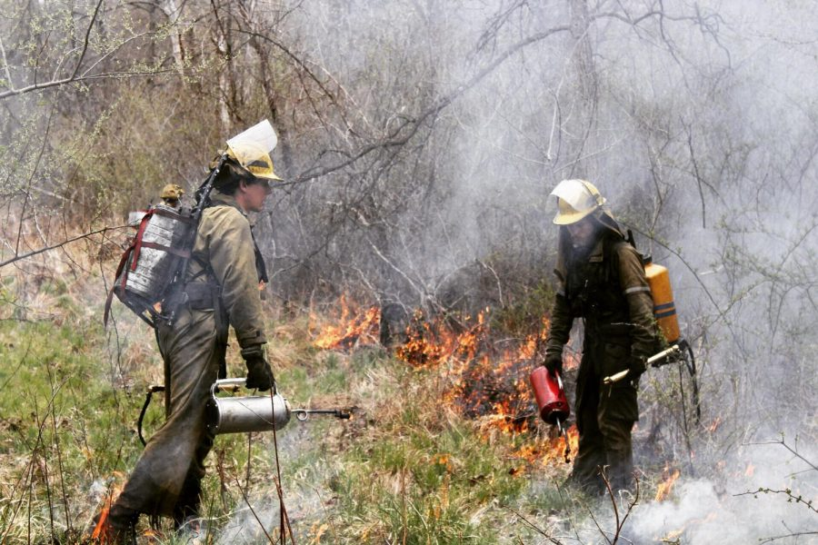 Plantwise+LLC+members+administering+the+burn+last+Saturday.