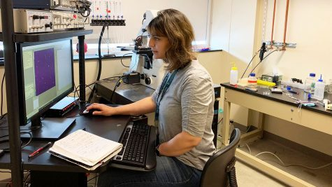 Doctoral student Sarah Denha travelled to Massachusetts over the summer to participate in a neurobiology course at the Marine Biological Laboratory. She was one of 18 students accepted into the course.